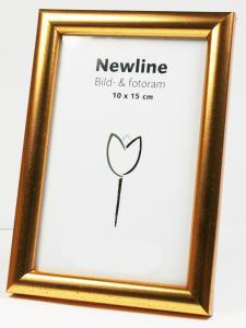 RAM NEWLINE 30X40 GULD