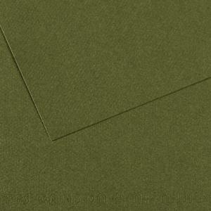 CANSON MI-TIENTES 50X65CM, IVY