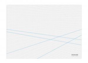 WHITELINES 3D PERSPECTIVE